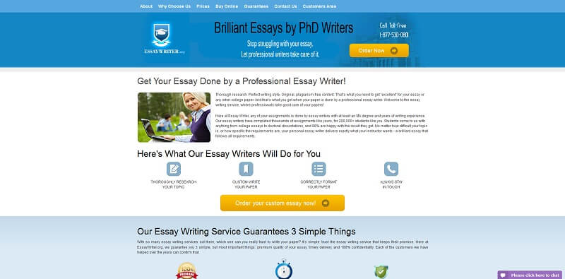 example of essay evaluation